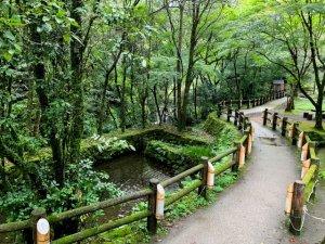 宮崎県 高千穂町で県民限定の宿泊割引を実施