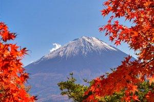 富士マリオットホテル山中湖、プライベートハイキング付き宿泊プランを発売